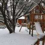 Jardin invierno