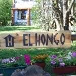 Cart villa langostura argentina angostura