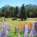 Parque Unquehue Villa Langostura Argentina Camping 2 La Angostura Neuquen