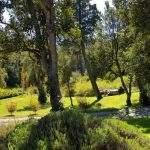 Parque Villa Langostura Neuquen Argentina Alquiler 3 Loma Del Sol La Angostura